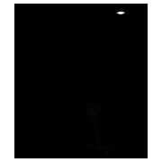 熊野のシンボル「八咫烏」